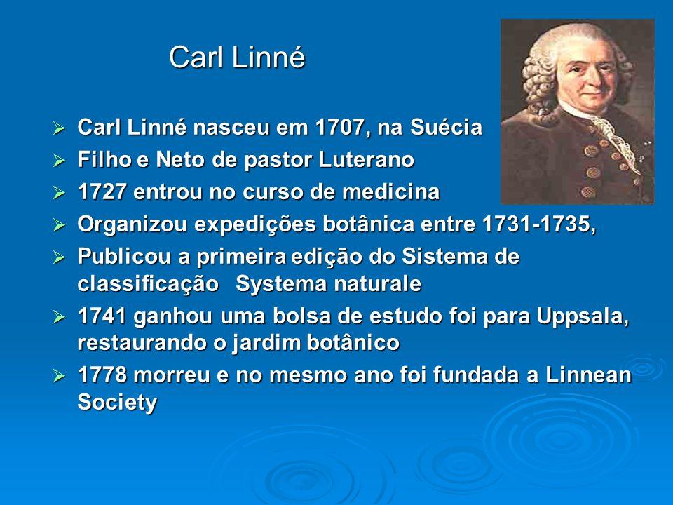 Carl Linné nasceu em 1707, na Suécia Carl Linné nasceu em 1707, na Suécia Filho e Neto de pastor Luterano Filho e Neto de pastor Luterano 1727 entrou