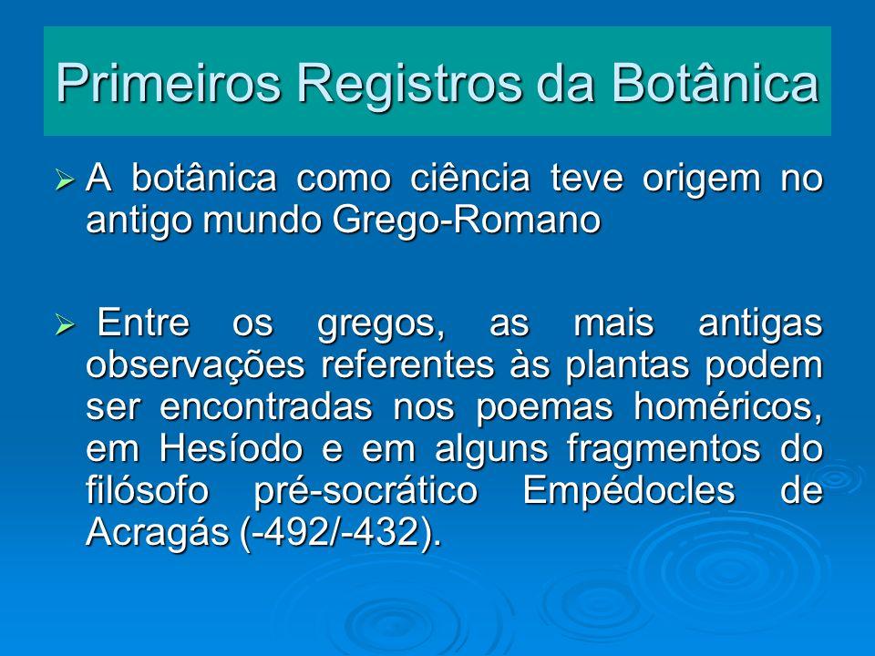 Primeiros Registros da Botânica A botânica como ciência teve origem no antigo mundo Grego-Romano A botânica como ciência teve origem no antigo mundo G