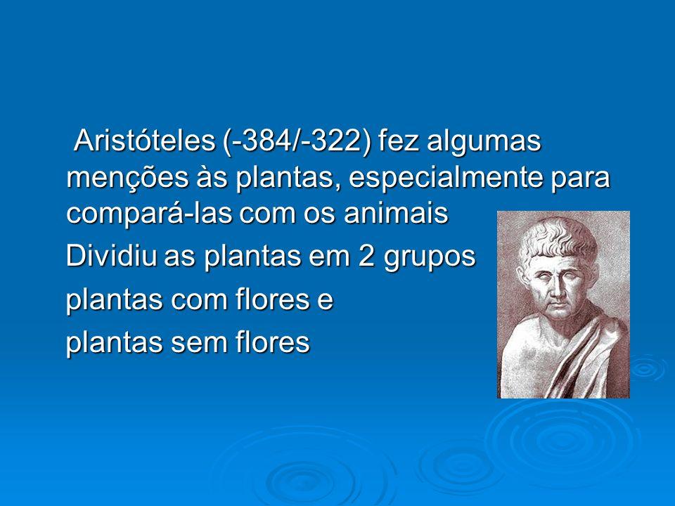 Aristóteles (-384/-322) fez algumas menções às plantas, especialmente para compará-las com os animais Aristóteles (-384/-322) fez algumas menções às p