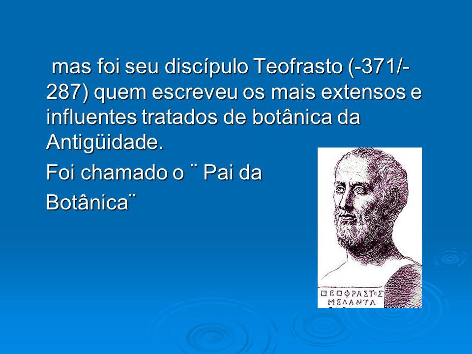 mas foi seu discípulo Teofrasto (-371/- 287) quem escreveu os mais extensos e influentes tratados de botânica da Antigüidade. mas foi seu discípulo Te