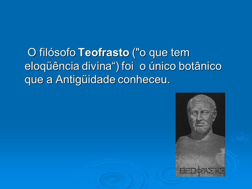 O filósofo Teofrasto (