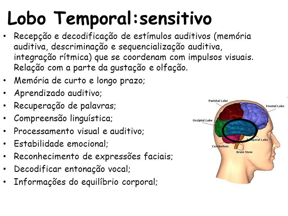 Lobo Temporal:sensitivo Recepção e decodificação de estímulos auditivos (memória auditiva, descriminação e sequencialização auditiva, integração rítmi