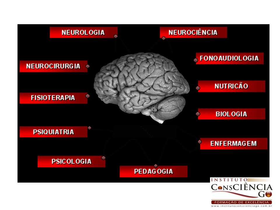 Resumindo...visão Audição; Equilíbrio; Memória; Linguagem...