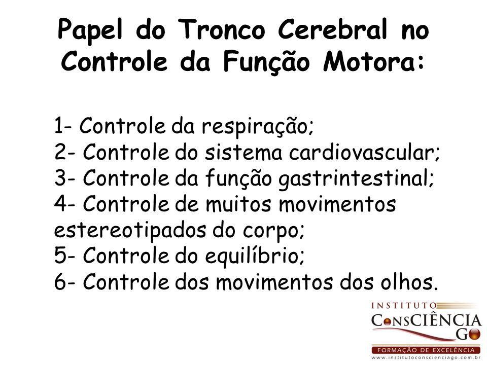 Papel do Tronco Cerebral no Controle da Função Motora: 1- Controle da respiração; 2- Controle do sistema cardiovascular; 3- Controle da função gastrin