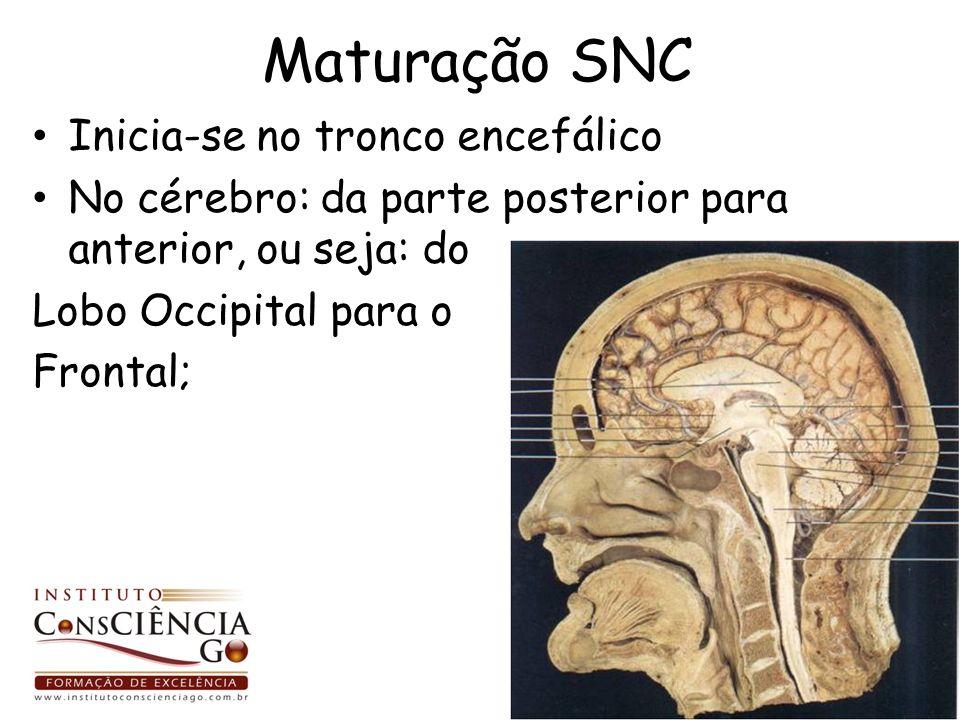 Maturação SNC Inicia-se no tronco encefálico No cérebro: da parte posterior para anterior, ou seja: do Lobo Occipital para o Frontal;