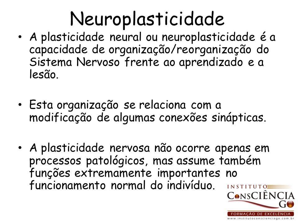 Neuroplasticidade A plasticidade neural ou neuroplasticidade é a capacidade de organização/reorganização do Sistema Nervoso frente ao aprendizado e a