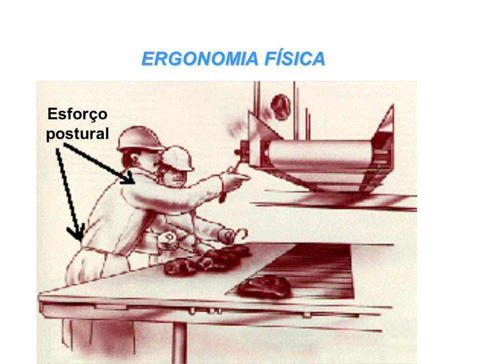 . Projeto de produtos Ergonomia Física