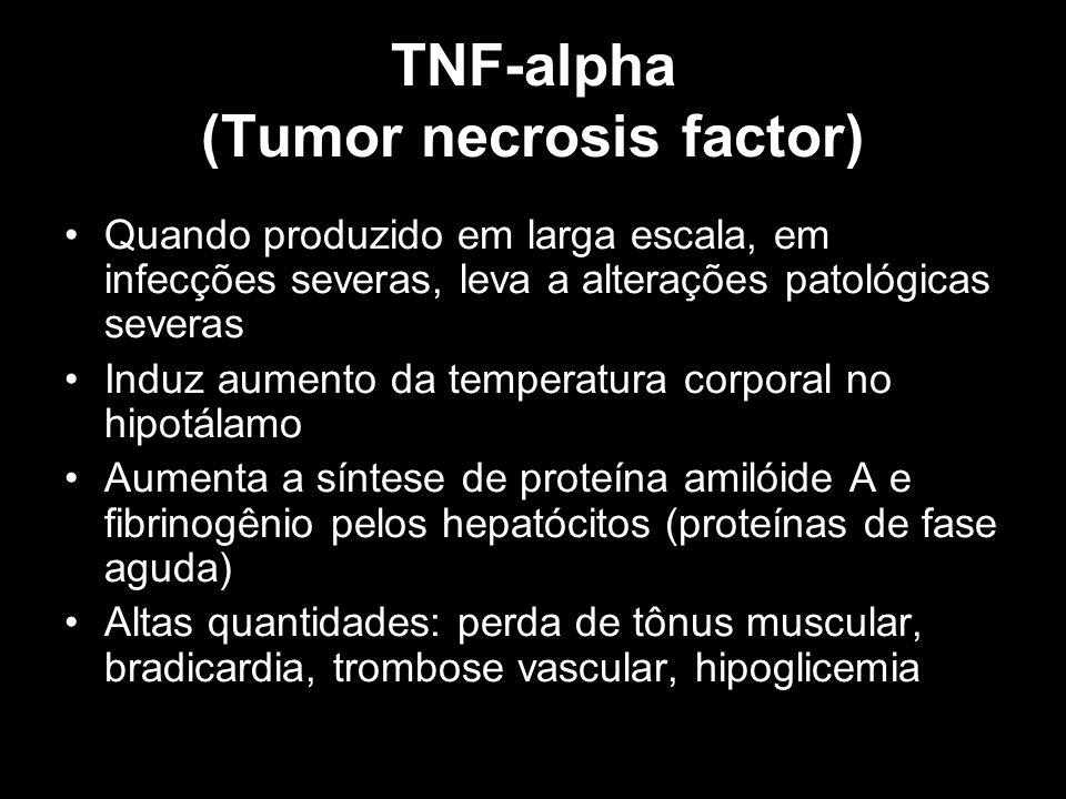 TNF-alpha (Tumor necrosis factor) Quando produzido em larga escala, em infecções severas, leva a alterações patológicas severas Induz aumento da tempe