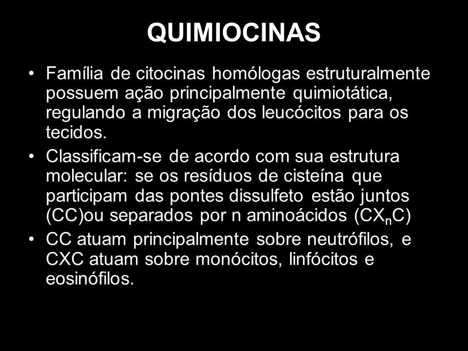 QUIMIOCINAS Família de citocinas homólogas estruturalmente possuem ação principalmente quimiotática, regulando a migração dos leucócitos para os tecid