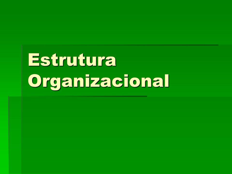 22 Estrutura Organizacional Considerações Básicas sobre Componentes, Condicionantes e Níveis de Influência da Estrutura Organizacional.