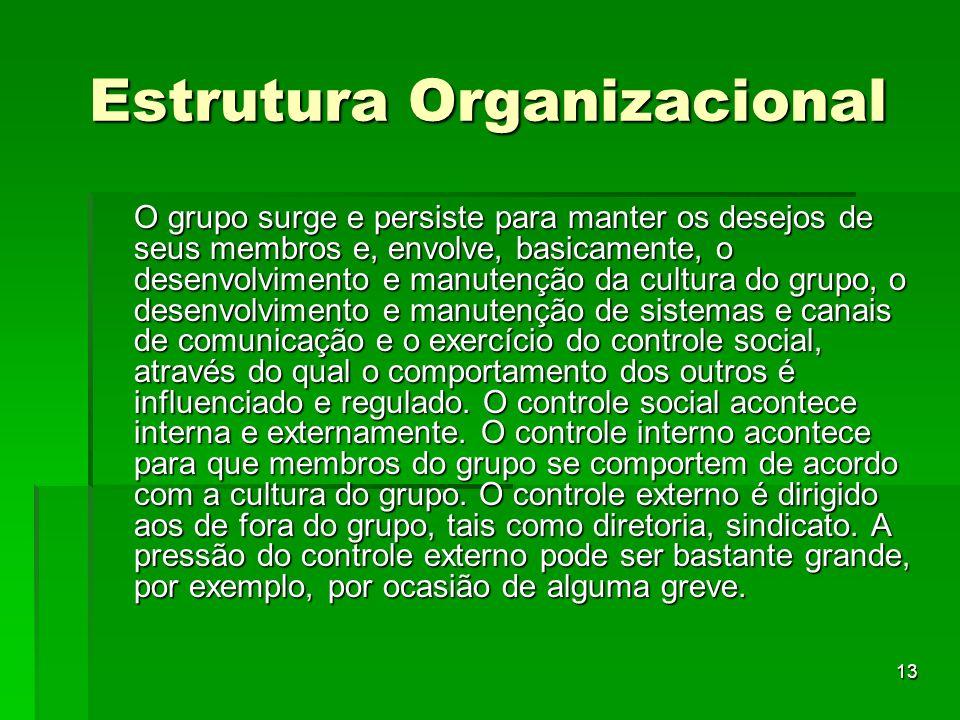 13 Estrutura Organizacional O grupo surge e persiste para manter os desejos de seus membros e, envolve, basicamente, o desenvolvimento e manutenção da