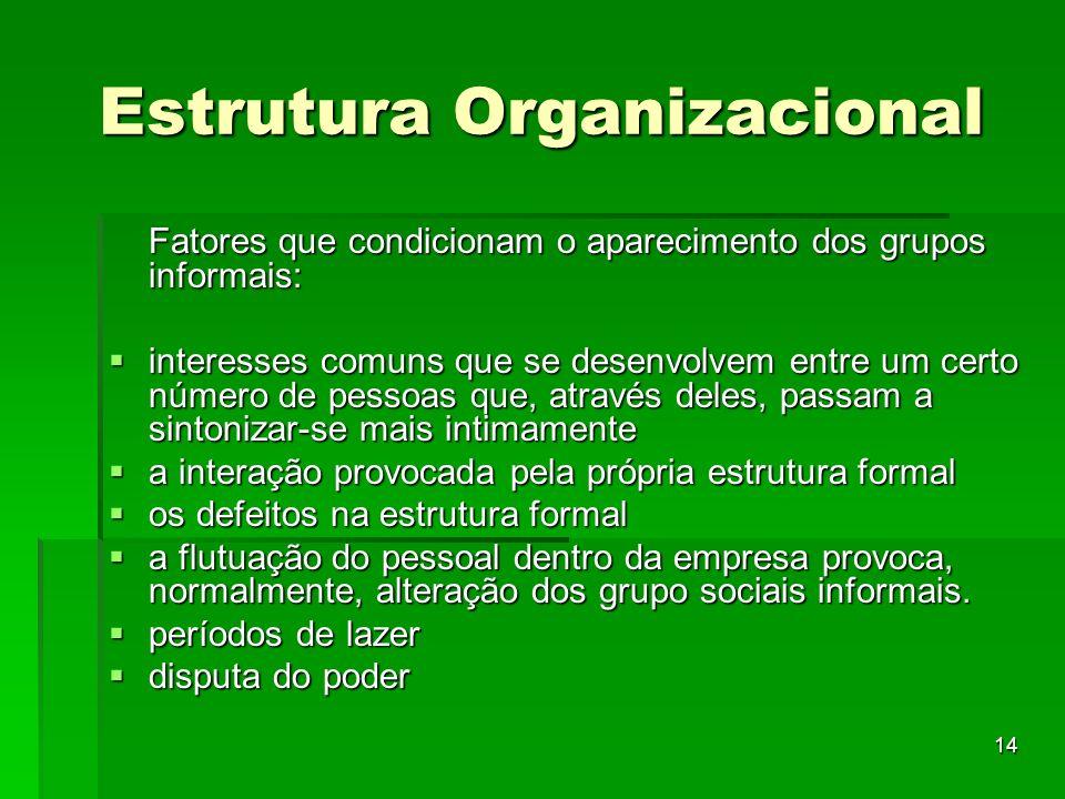 14 Estrutura Organizacional Fatores que condicionam o aparecimento dos grupos informais: interesses comuns que se desenvolvem entre um certo número de