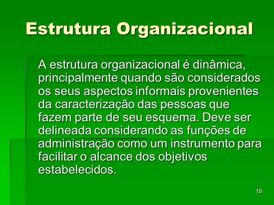 15 Estrutura Organizacional A estrutura organizacional é dinâmica, principalmente quando são considerados os seus aspectos informais provenientes da c