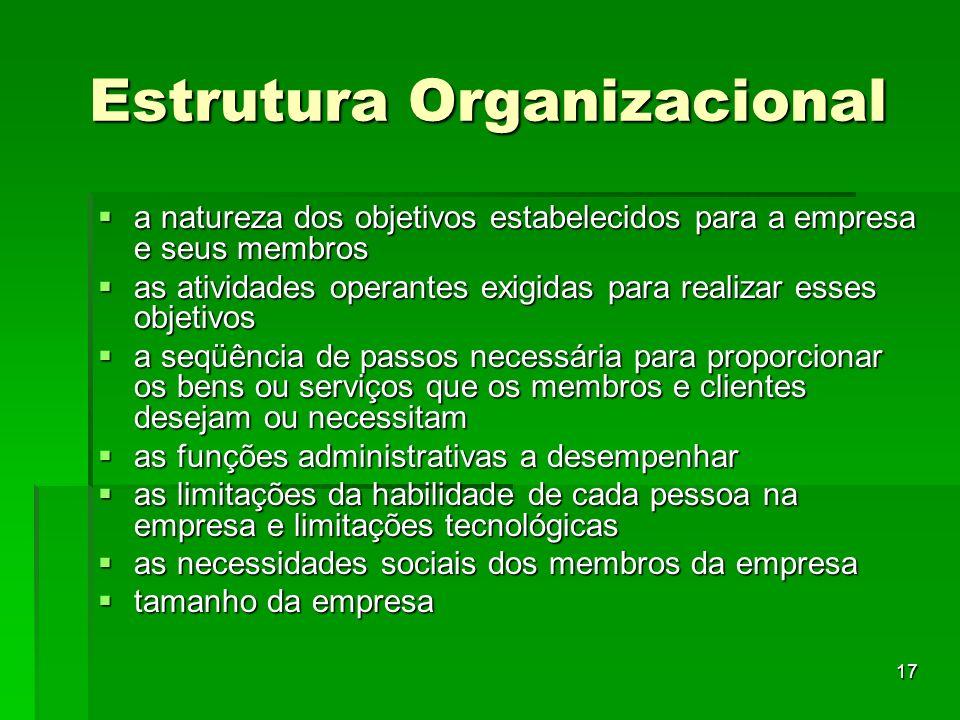 17 Estrutura Organizacional a natureza dos objetivos estabelecidos para a empresa e seus membros a natureza dos objetivos estabelecidos para a empresa