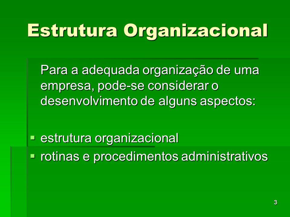 3 Estrutura Organizacional Para a adequada organização de uma empresa, pode-se considerar o desenvolvimento de alguns aspectos: estrutura organizacion