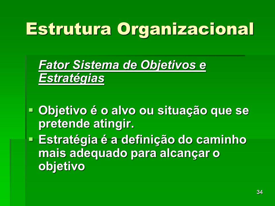34 Estrutura Organizacional Fator Sistema de Objetivos e Estratégias Objetivo é o alvo ou situação que se pretende atingir. Objetivo é o alvo ou situa