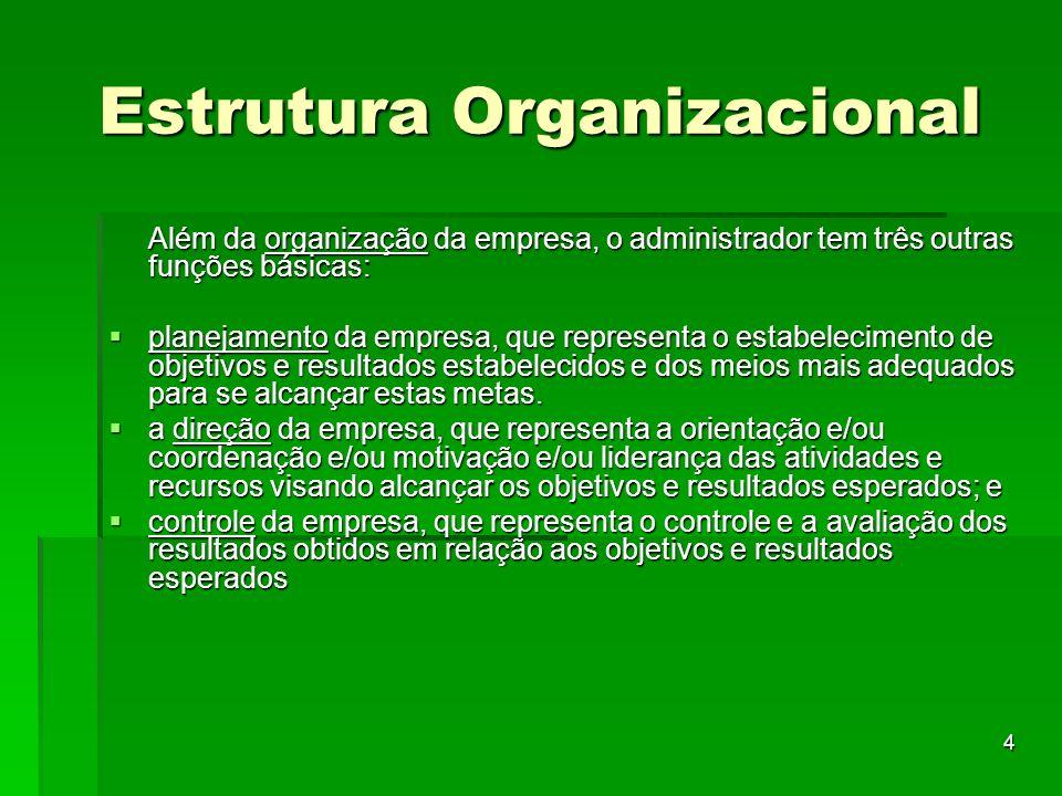 15 Estrutura Organizacional A estrutura organizacional é dinâmica, principalmente quando são considerados os seus aspectos informais provenientes da caracterização das pessoas que fazem parte de seu esquema.