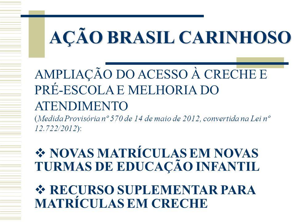 AÇÃO BRASIL CARINHOSO AMPLIAÇÃO DO ACESSO À CRECHE E PRÉ-ESCOLA E MELHORIA DO ATENDIMENTO (Medida Provisória nº 570 de 14 de maio de 2012, convertida