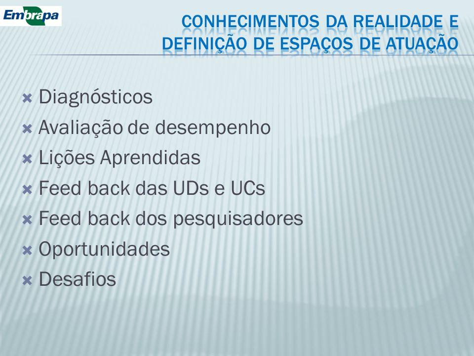 Diagnósticos Avaliação de desempenho Lições Aprendidas Feed back das UDs e UCs Feed back dos pesquisadores Oportunidades Desafios