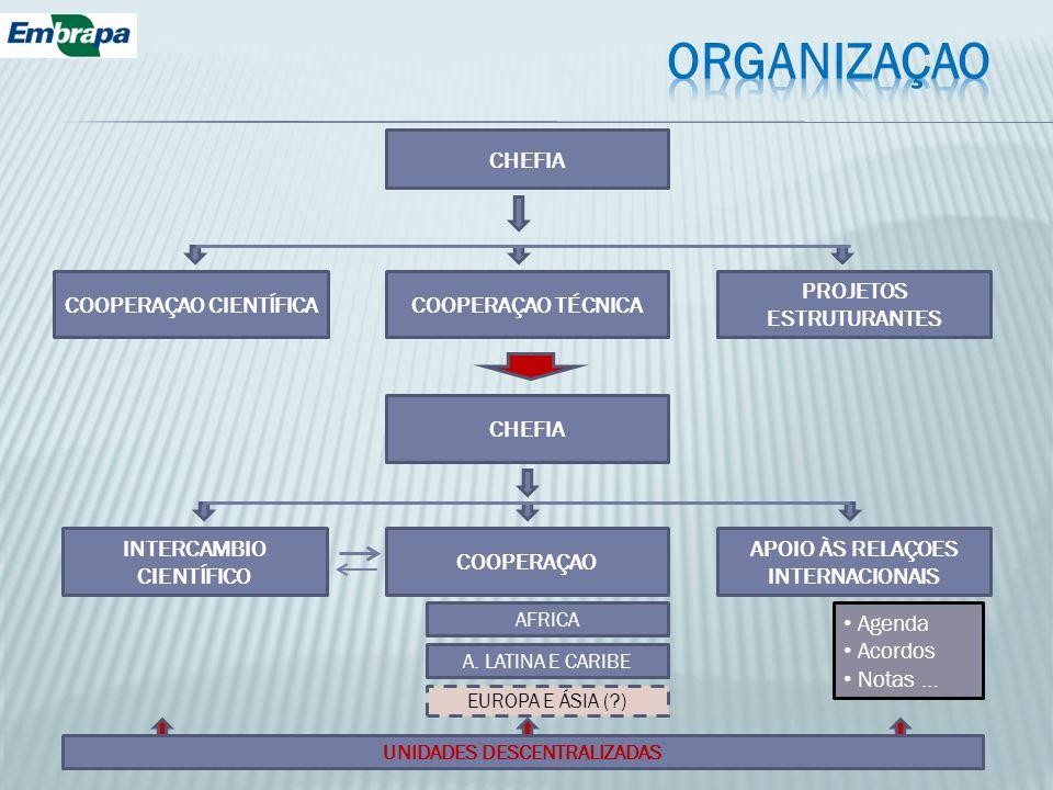 CHEFIA COOPERAÇAO CIENTÍFICA INTERCAMBIO CIENTÍFICO APOIO ÀS RELAÇOES INTERNACIONAIS COOPERAÇAO COOPERAÇAO TÉCNICA CHEFIA PROJETOS ESTRUTURANTES AFRIC