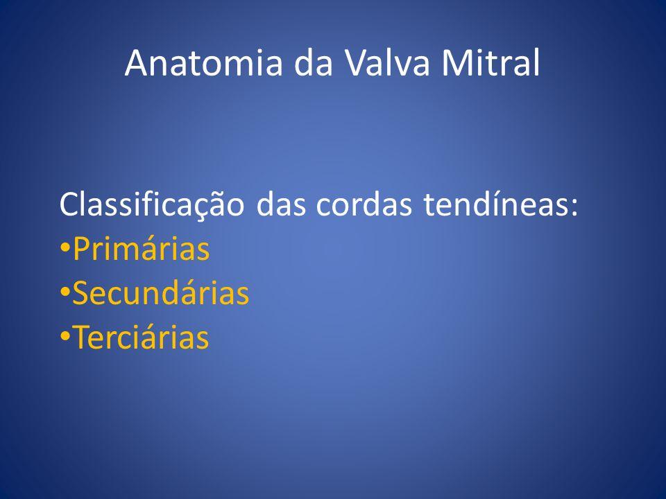 Patologia da Valva Mitral Deficiência Fibroelástica Doença de Barlow Síndrome de Marfan Doença Reumática Doença Isquêmica