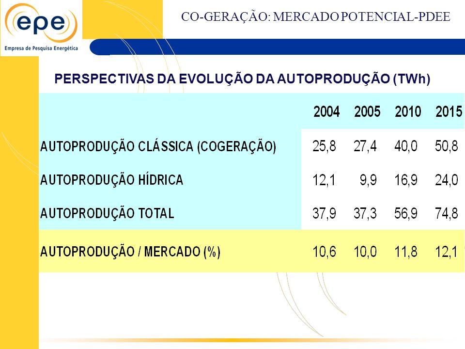 PERSPECTIVAS DA EVOLUÇÃO DA AUTOPRODUÇÃO (TWh) CO-GERAÇÃO: MERCADO POTENCIAL-PDEE