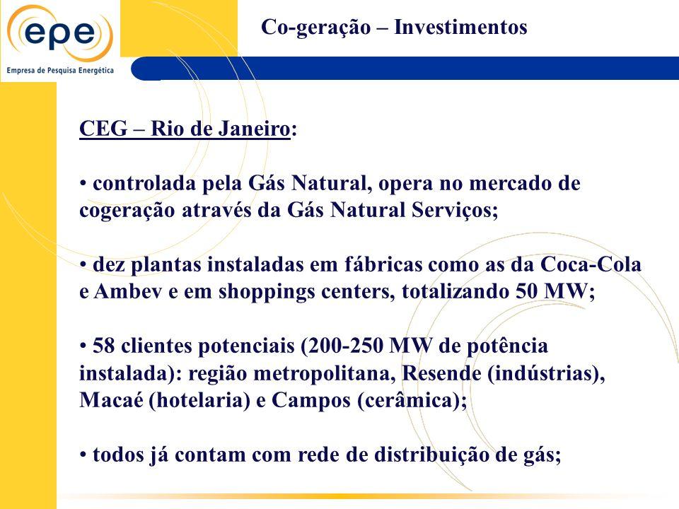 Co-geração – Investimentos CEG – Rio de Janeiro: controlada pela Gás Natural, opera no mercado de cogeração através da Gás Natural Serviços; dez plant