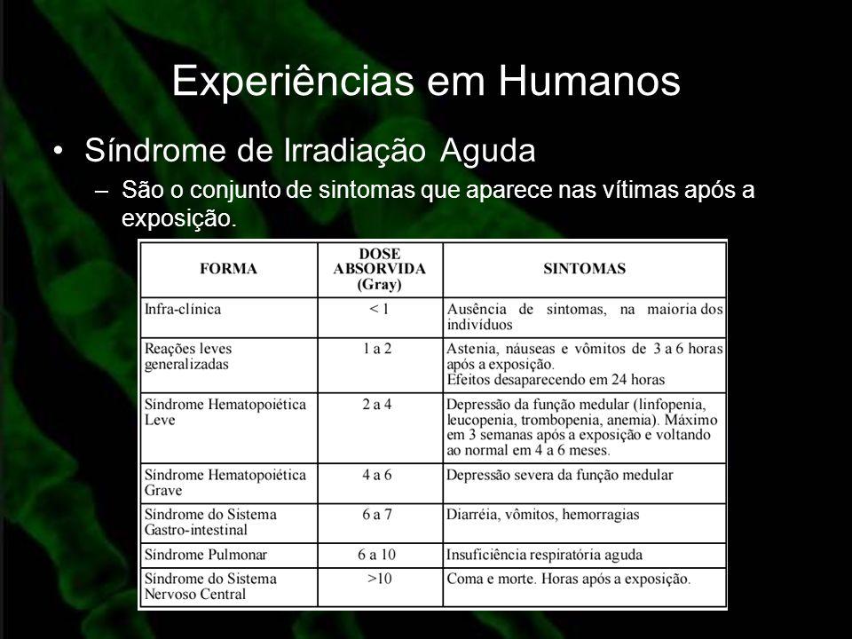 Experiências em Humanos Síndrome de Irradiação Aguda –São o conjunto de sintomas que aparece nas vítimas após a exposição.