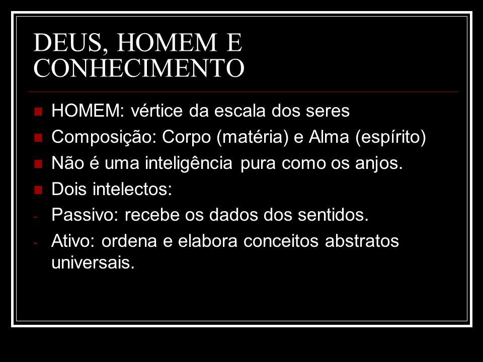 DEUS, HOMEM E CONHECIMENTO HOMEM: vértice da escala dos seres Composição: Corpo (matéria) e Alma (espírito) Não é uma inteligência pura como os anjos.
