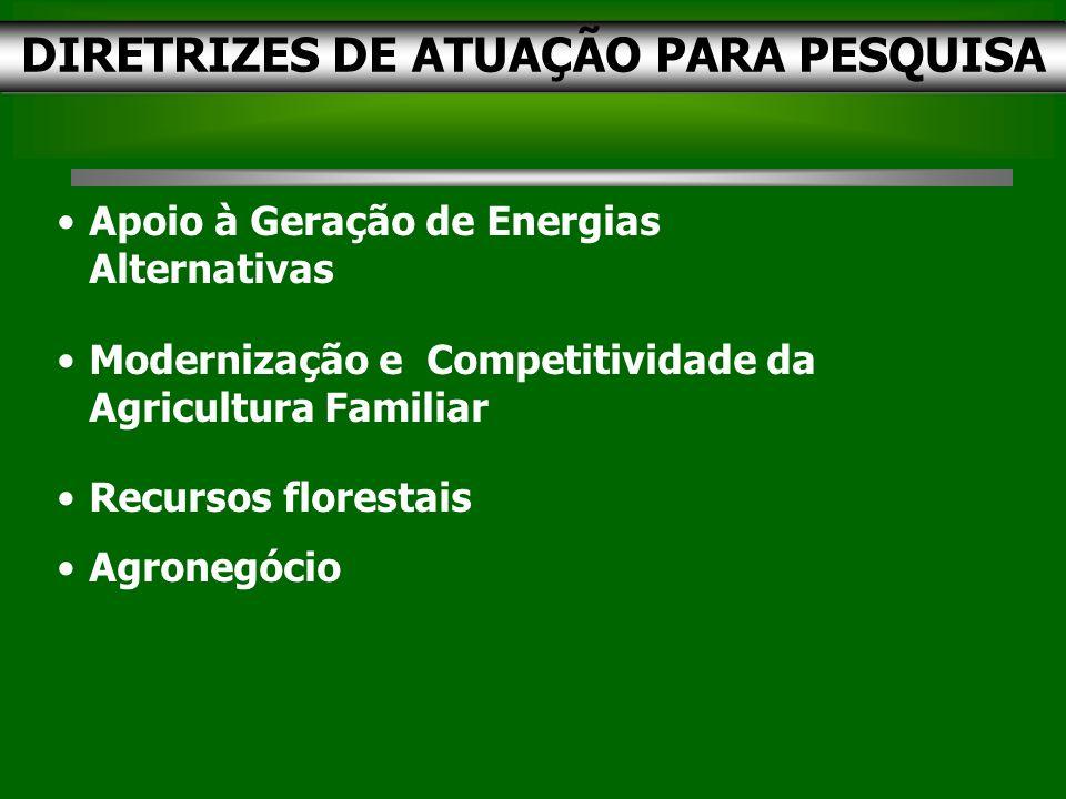 DIRETRIZES DE ATUAÇÃO PARA PESQUISA Apoio à Geração de Energias Alternativas Modernização e Competitividade da Agricultura Familiar Recursos florestais Agronegócio