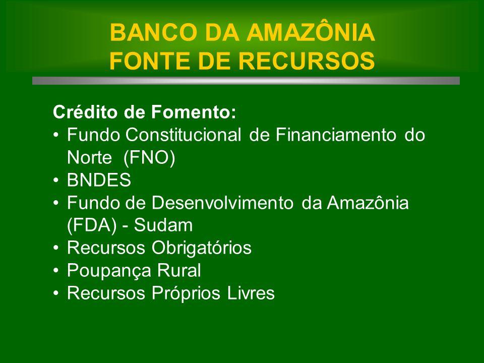 Crédito de Fomento: Fundo Constitucional de Financiamento do Norte (FNO) BNDES Fundo de Desenvolvimento da Amazônia (FDA) - Sudam Recursos Obrigatórios Poupança Rural Recursos Próprios Livres BANCO DA AMAZÔNIA FONTE DE RECURSOS