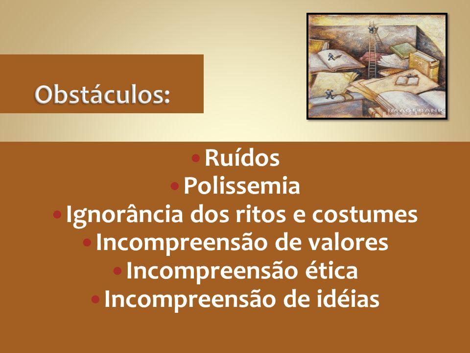 Ruídos Polissemia Ignorância dos ritos e costumes Incompreensão de valores Incompreensão ética Incompreensão de idéias