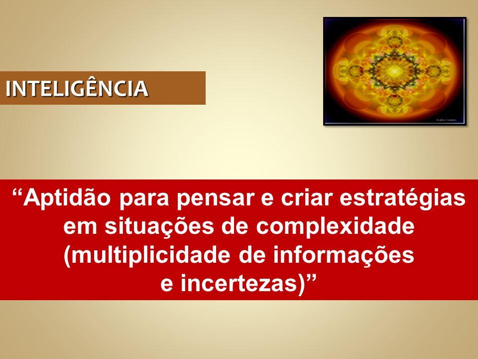 INTELIGÊNCIA Aptidão para pensar e criar estratégias em situações de complexidade (multiplicidade de informações e incertezas)