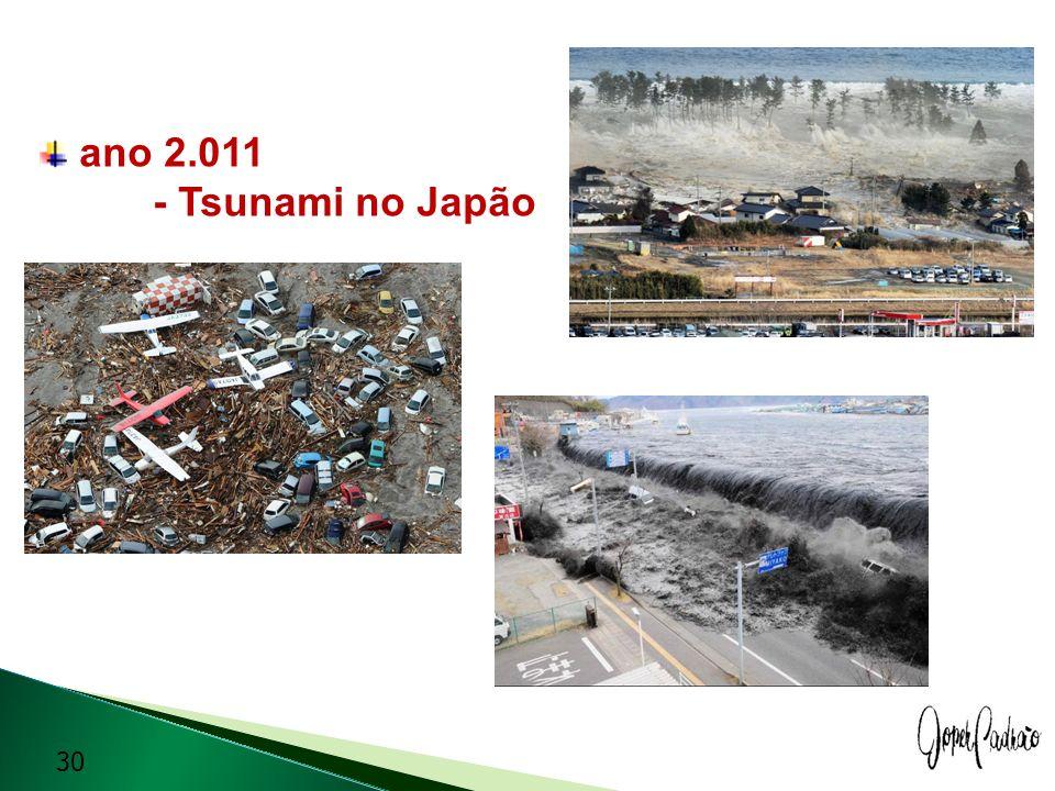 ano 2.011 - Tsunami no Japão 30