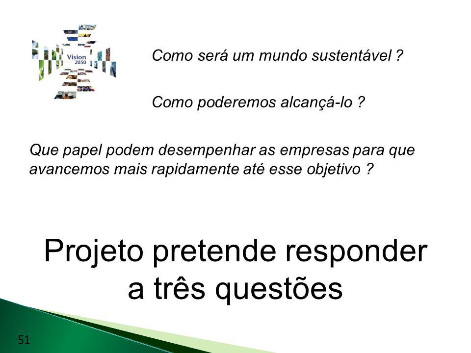 Projeto pretende responder a três questões Como será um mundo sustentável ? Como poderemos alcançá-lo ? Que papel podem desempenhar as empresas para q