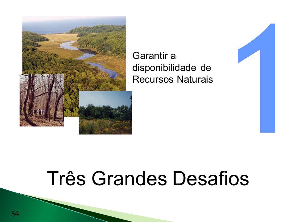 Três Grandes Desafios Garantir a disponibilidade de Recursos Naturais 1 54