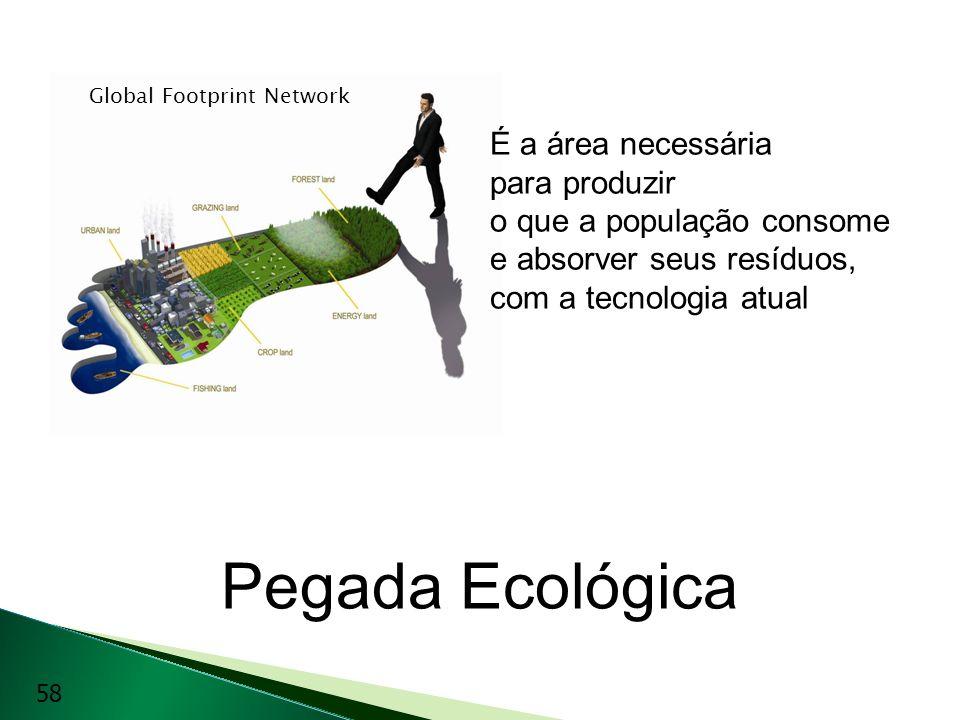 Pegada Ecológica É a área necessária para produzir o que a população consome e absorver seus resíduos, com a tecnologia atual Global Footprint Network