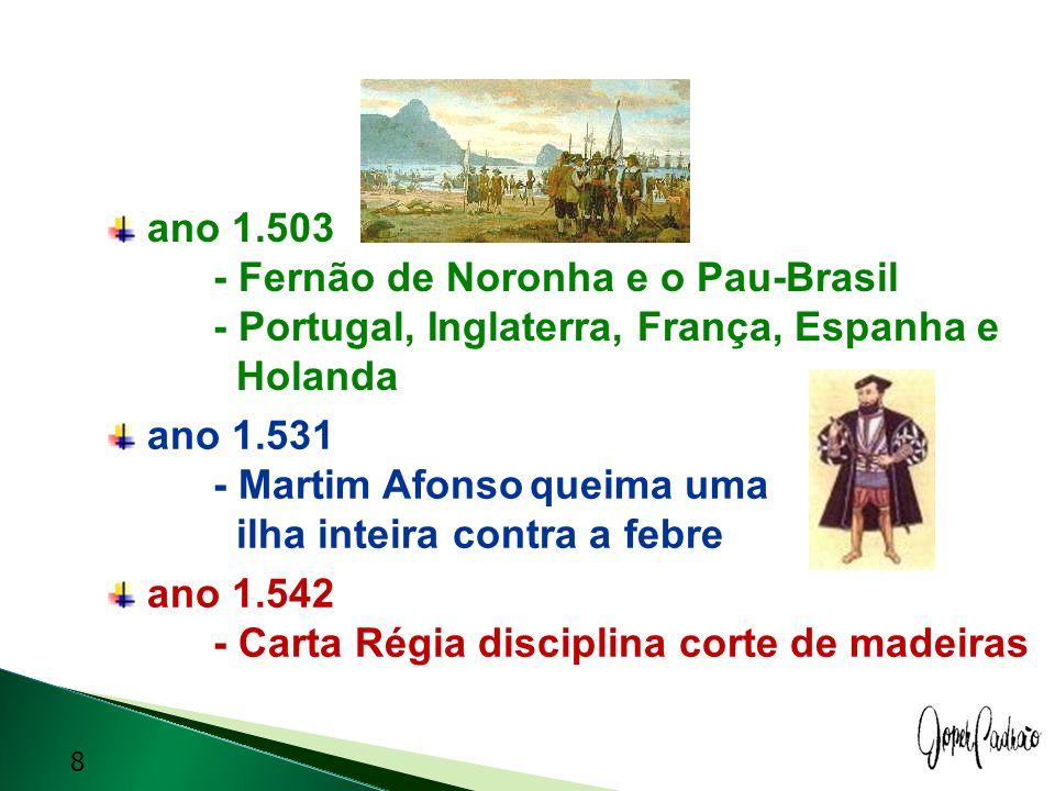 ano 1.503 - Fernão de Noronha e o Pau-Brasil - Portugal, Inglaterra, França, Espanha e Holanda ano 1.531 - Martim Afonsoqueima uma ilha inteira contra