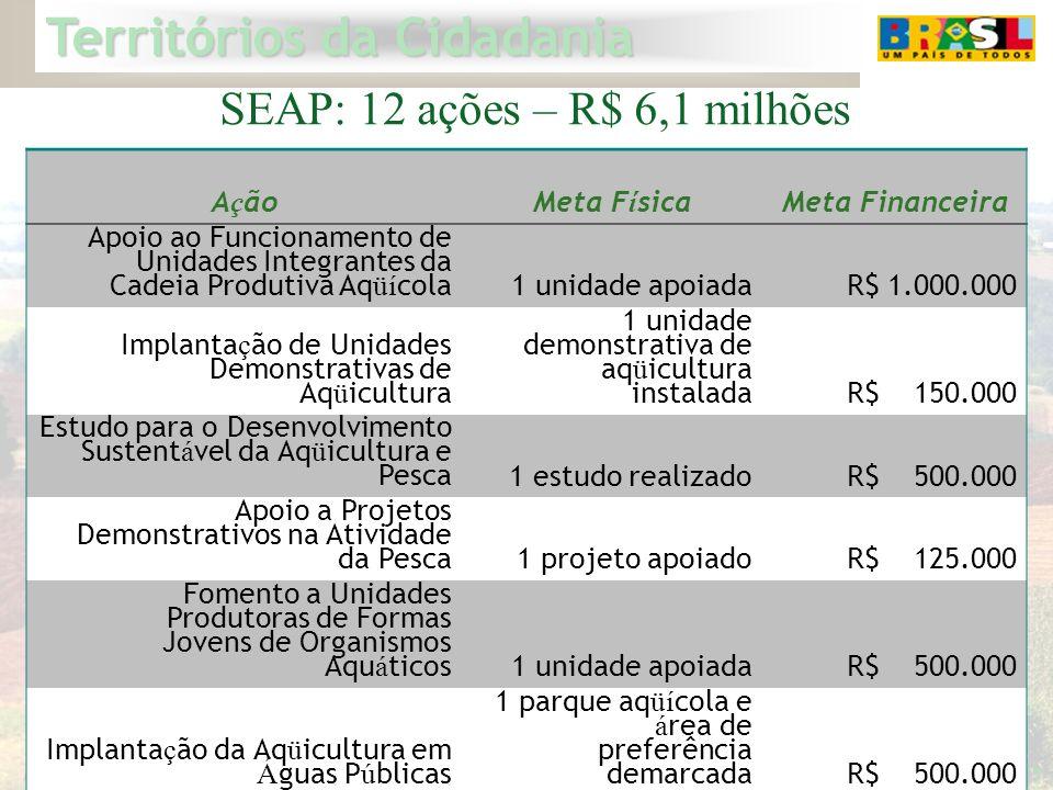 Territórios da Cidadania 17 SEAP: 12 ações – R$ 6,1 milhões A ç ãoMeta F í sicaMeta Financeira Apoio ao Funcionamento de Unidades Integrantes da Cadei
