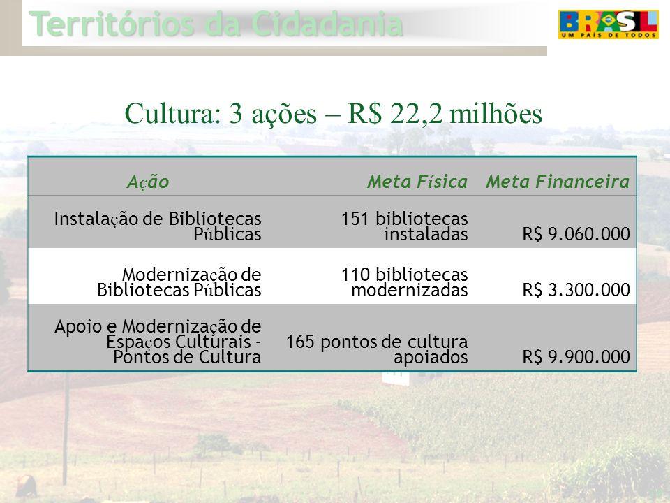 Territórios da Cidadania 19 Cultura: 3 ações – R$ 22,2 milhões A ç ãoMeta F í sicaMeta Financeira Instala ç ão de Bibliotecas P ú blicas 151 bibliotec