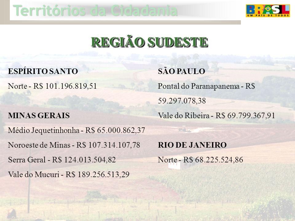 Territórios da Cidadania 32 REGIÃO SUDESTE ESPÍRITO SANTO Norte - R$ 101.196.819,51 MINAS GERAIS Médio Jequetinhonha - R$ 65.000.862,37 Noroeste de Mi