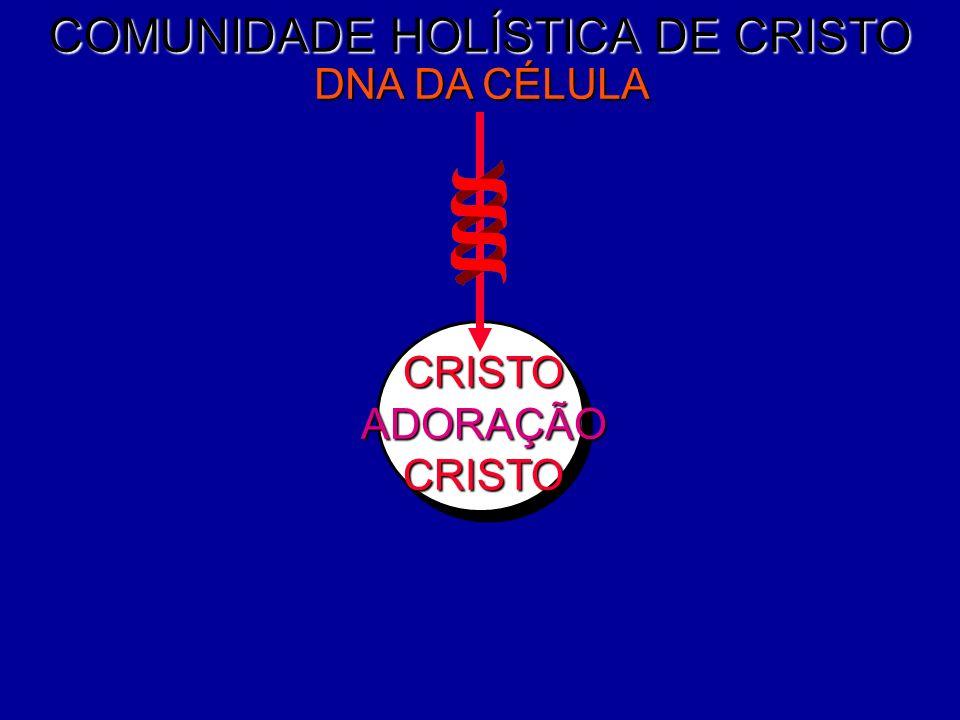 Igreja Batista Restituição DNA DA CÉLULAFUNÇÕES DA CÉLULA SISTEMA DE FORÇA DA CÉLULA