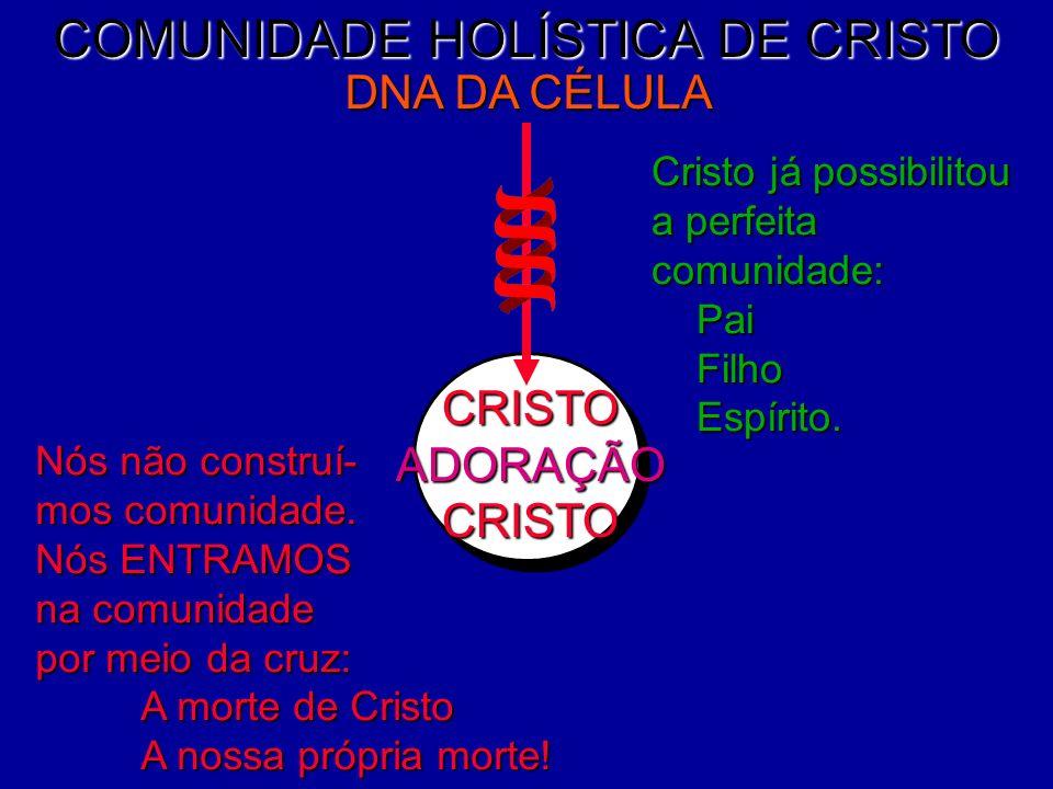CRISTOADORAÇÃOCRISTO COMUNIDADE HOLÍSTICA DE CRISTO DNA DA CÉLULA Cristo já possibilitou a perfeita comunidade: Pai Pai Filho Filho Espírito. Espírito