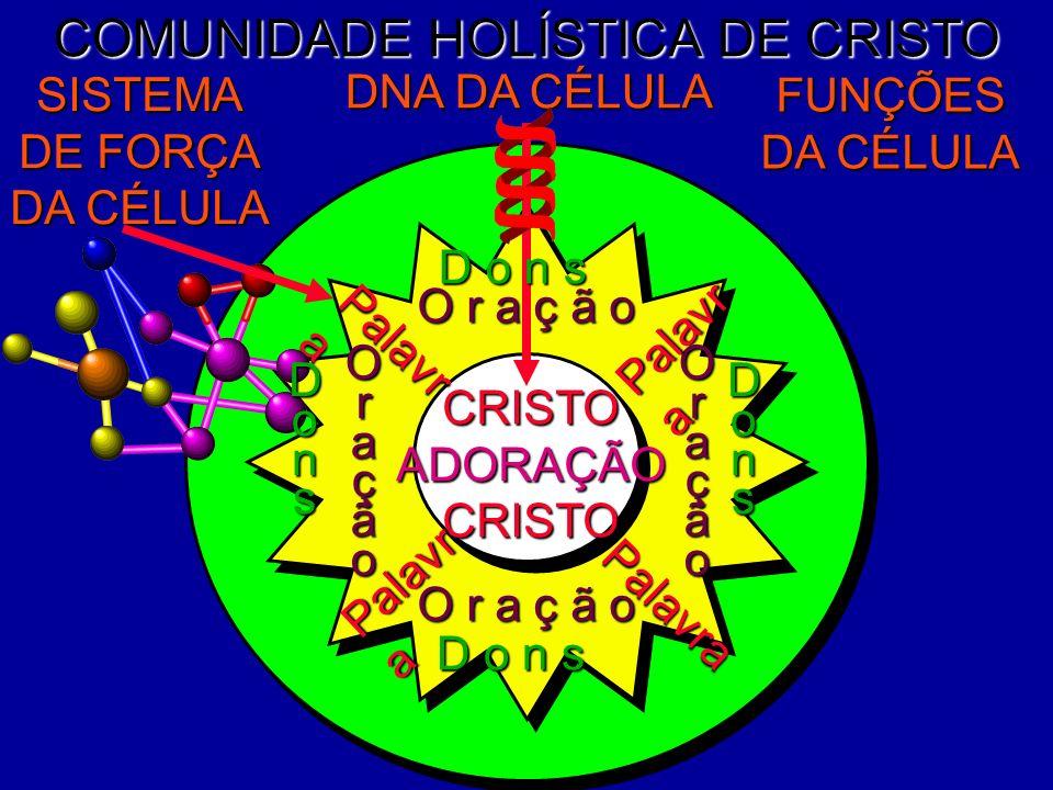 COMUNIDADE HOLÍSTICA DE CRISTO DNA DA CÉLULA SISTEMA DE FORÇA DA CÉLULA CRISTOADORAÇÃOCRISTO O r a ç ã o OraçãoOração D o n s Dons Palavra Palavr a Do