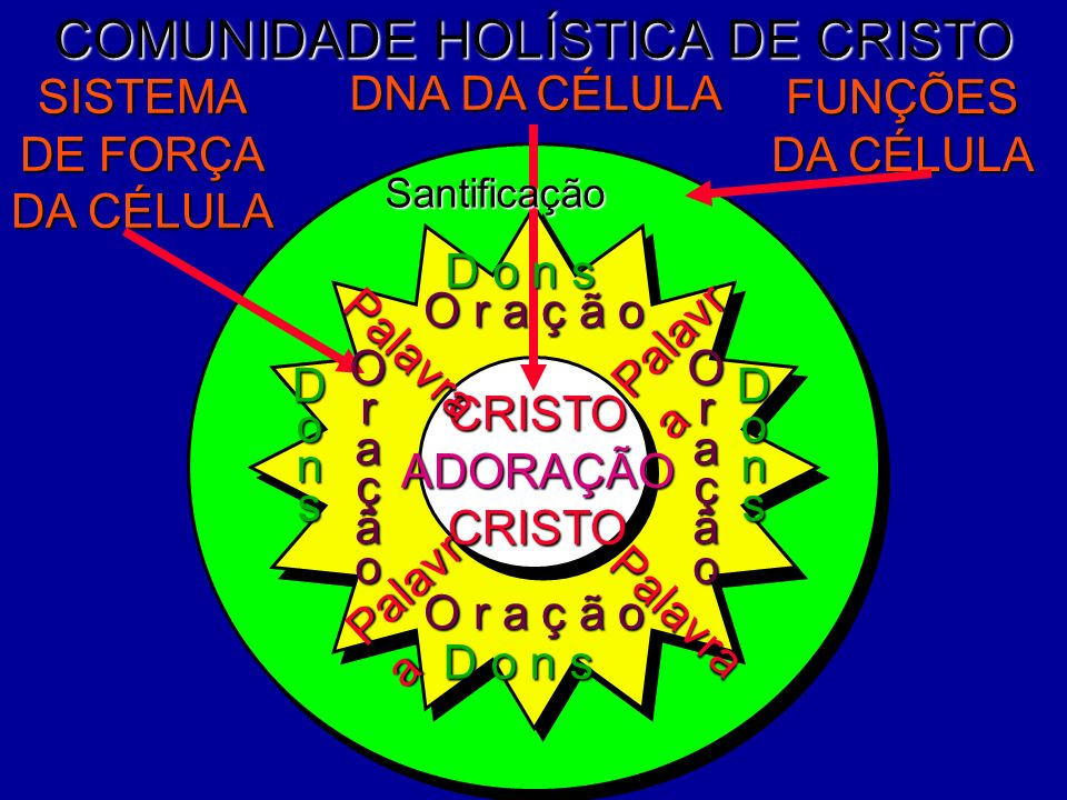COMUNIDADE HOLÍSTICA DE CRISTO DNA DA CÉLULA FUNÇÕES DA CÉLULA SISTEMA DE FORÇA DA CÉLULA CRISTOADORAÇÃOCRISTO O r a ç ã o OraçãoOração D o n s Dons P