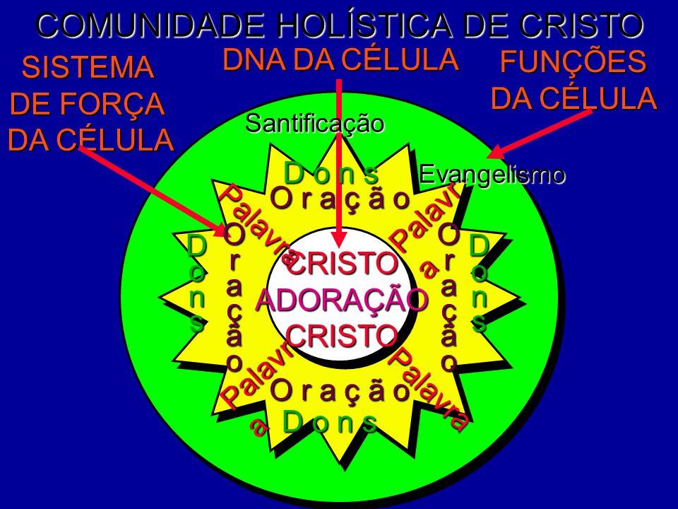 COMUNIDADE HOLÍSTICA DE CRISTO DNA DA CÉLULA FUNÇÕES DA CÉLULA SISTEMA DE FORÇA DA CÉLULA CRISTOADORAÇÃOCRISTO Santificação O r a ç ã o OraçãoOração D