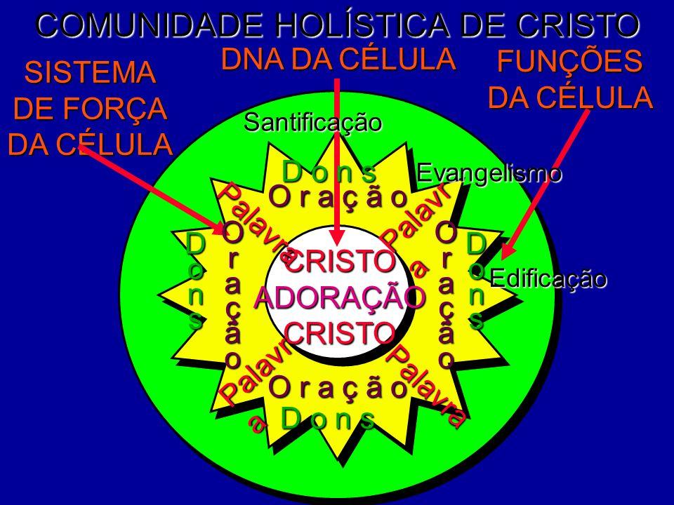 COMUNIDADE HOLÍSTICA DE CRISTO DNA DA CÉLULA FUNÇÕES DA CÉLULA SISTEMA DE FORÇA DA CÉLULA Evangelismo CRISTOADORAÇÃOCRISTO Santificação O r a ç ã o Or