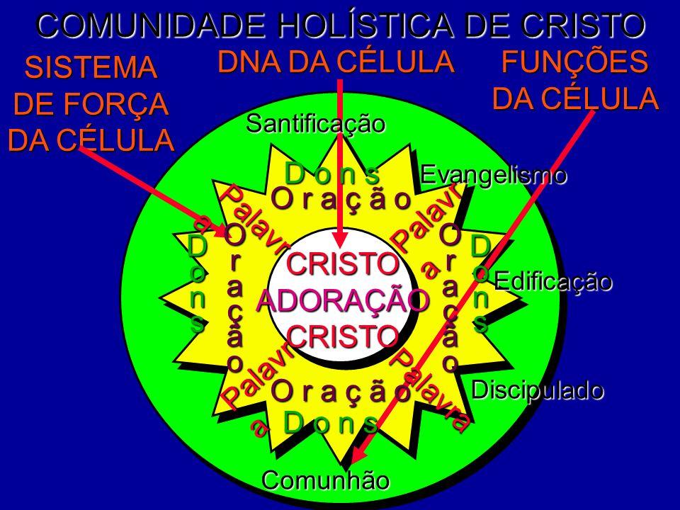 COMUNIDADE HOLÍSTICA DE CRISTO Edificação Discipulado DNA DA CÉLULA FUNÇÕES DA CÉLULA SISTEMA DE FORÇA DA CÉLULA Evangelismo CRISTOADORAÇÃOCRISTO Sant