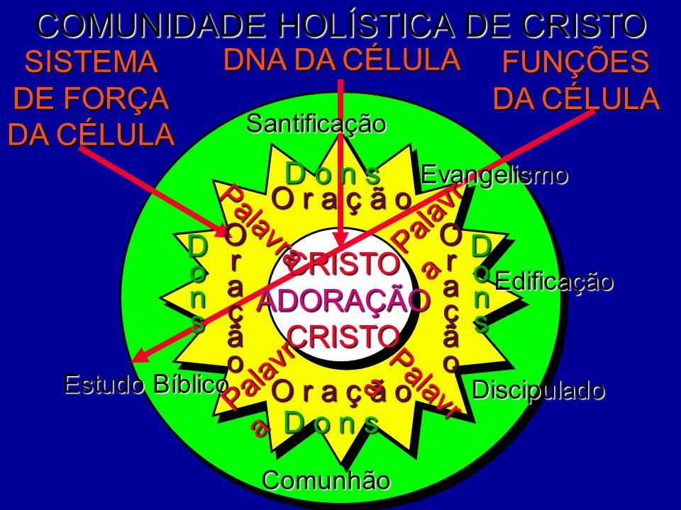COMUNIDADE HOLÍSTICA DE CRISTO Edificação Discipulado DNA DA CÉLULA FUNÇÕES DA CÉLULA SISTEMA DE FORÇA DA CÉLULA Evangelismo CRISTOADORAÇÃOCRISTO Comu