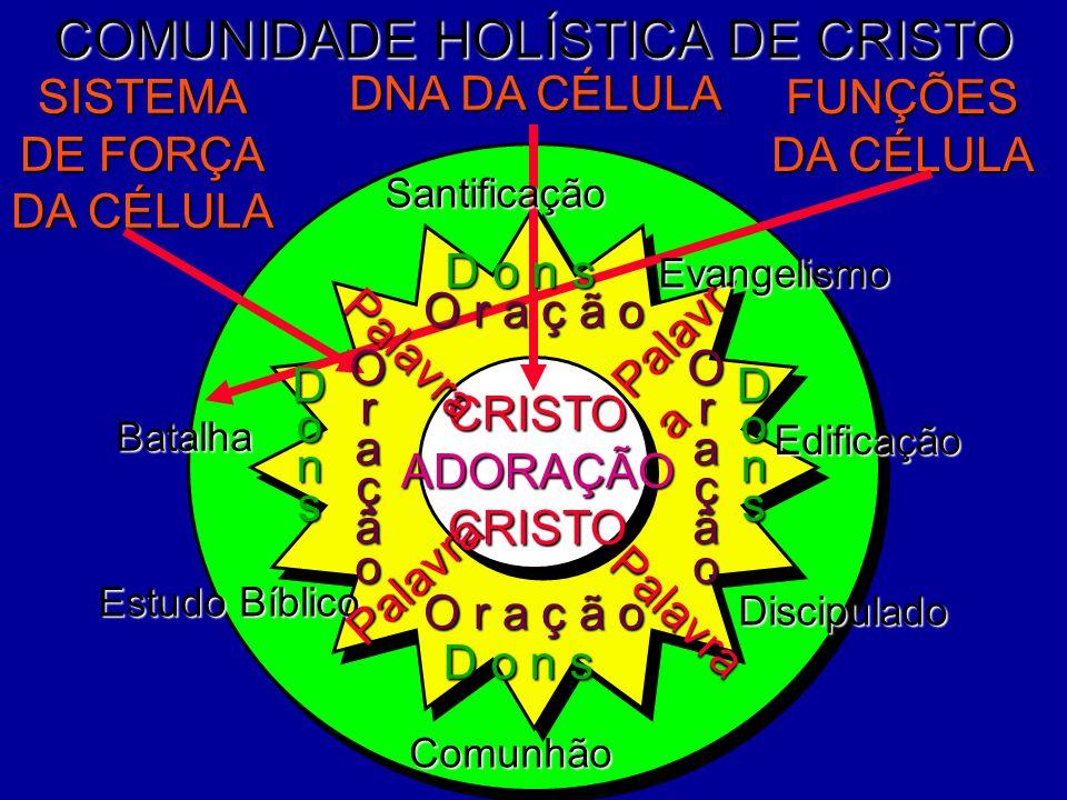 COMUNIDADE HOLÍSTICA DE CRISTO Edificação Discipulado Estudo Bíblico DNA DA CÉLULA FUNÇÕES DA CÉLULA SISTEMA DE FORÇA DA CÉLULA Evangelismo CRISTOADOR